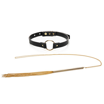 An image of the Sexccessories Gift Set on a white background, containing both the Chain Reaction flogger necklace and the Vixen choker behind it.